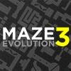 Labirent Evrimi 3 oyunu