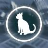 Hırsız Kedi oyunu