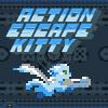 Uçan Kaçan Kedi oyunu oyna